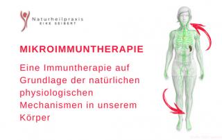 Mikroimmuntherapie – Das Immunsystem ins Gleichgewicht bringen