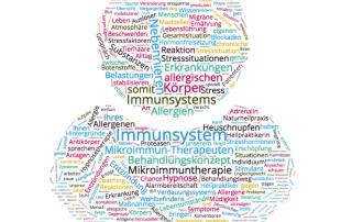 Wortwolke Allergien Immunsystem eike Seibert