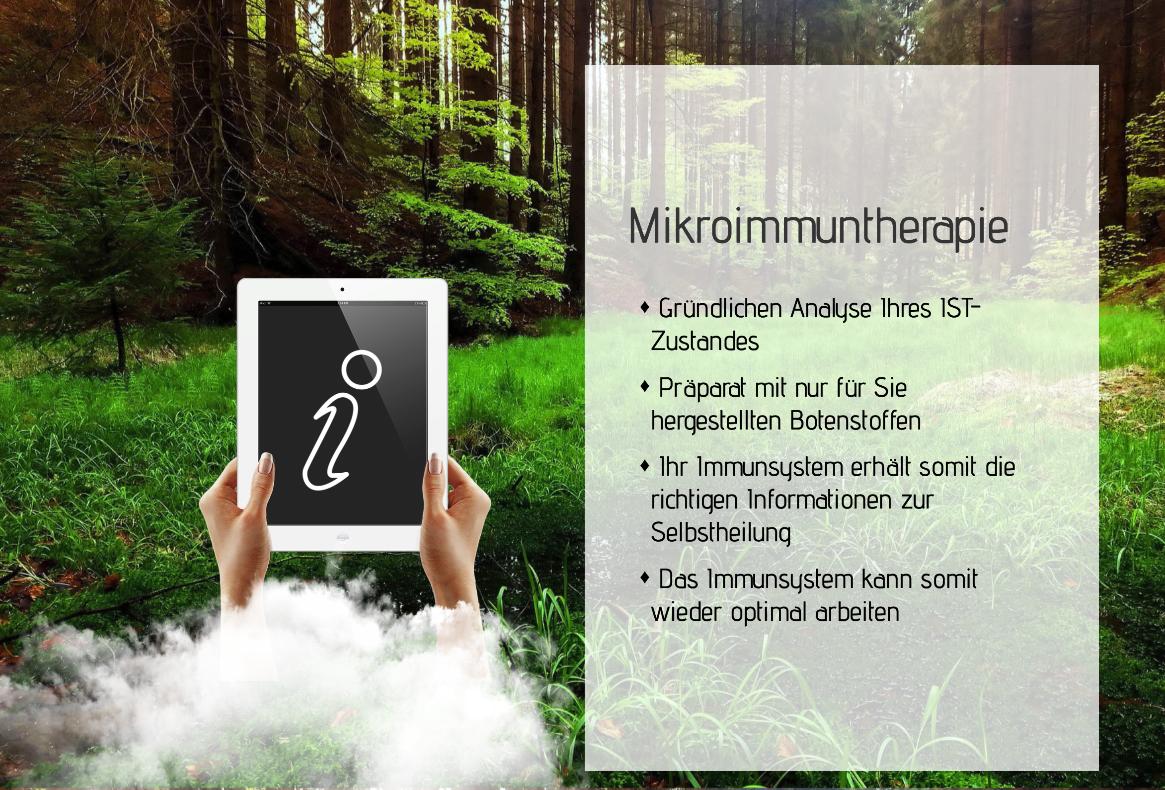 Mikroimmuntherapie Eike Seibert Frühjahrsmüdigkeit