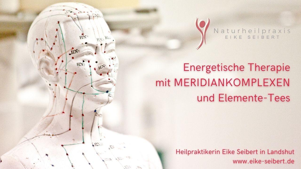 Meridiankomplexe und Elemente-Tees - Naturheilpraxis Eike Seibert in Landshut
